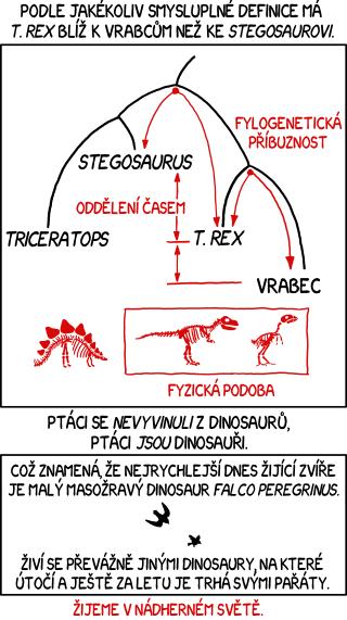 Ptáci a dinosauři